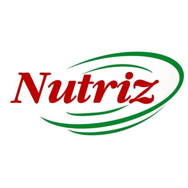 JARDINEIRA PANACHE NAO COZIDA NUTRIZ 300G